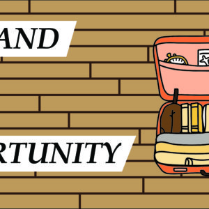 the_land_of_opportunity_web